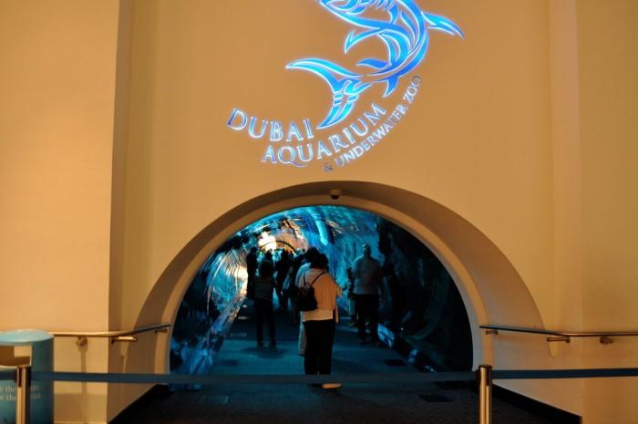 dubai-mall-aquarium-things-to-do-in-dubai